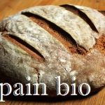 pain bio